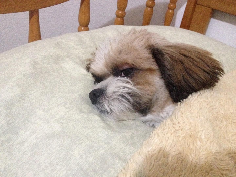 Nick Sleeping